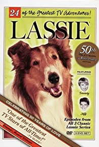 Primary photo for Lassie's Interlude