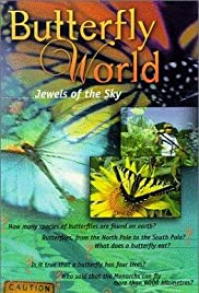 Butterfly World Poster