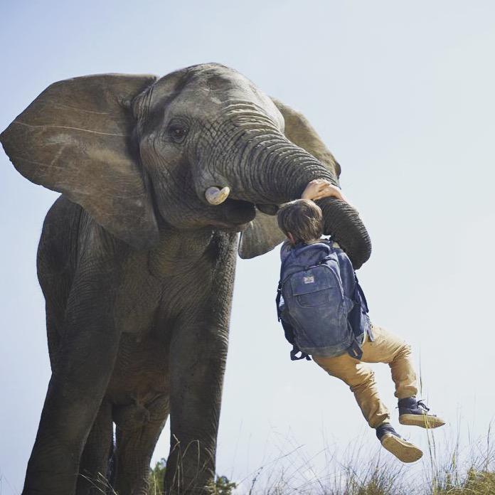 against the wild 2 survive the serengeti full movie