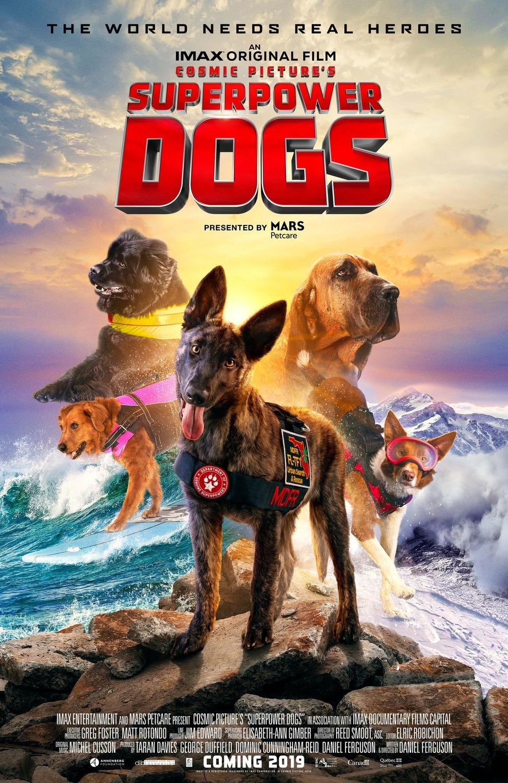 Superpower Dogs 2019 Imdb