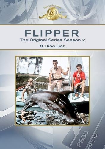Luke Halpin, Brian Kelly, Tommy Norden, and Flipper in Flipper (1964)