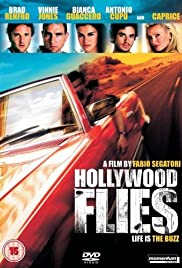Hollywood Flies (2005) Poster - Movie Forum, Cast, Reviews