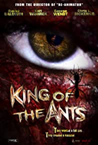 Primary photo for King of the Ants