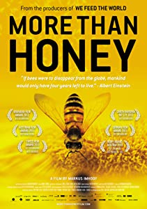 Sites for downloading torrent movies More Than Honey by Markus Imhoof [Full]