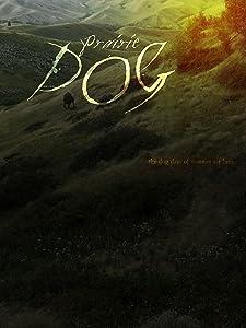 Watch tv videos movies Prairie Dog [Full]