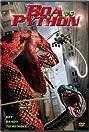 Boa vs. Python (2004) Poster