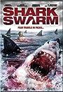 Shark Swarm