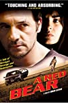 Red Bear (2002)