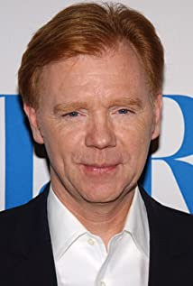 Image result for david caruso