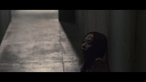 Theatrical trailer for Killers.