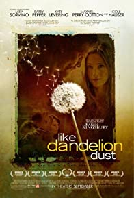 Primary photo for Like Dandelion Dust