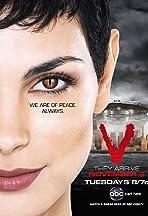 V - Die Besucher