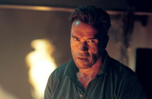 Arnold Schwarzenegger in Collateral Damage 2002