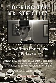 Looking For Mr Stieglitz Poster