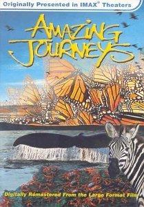 Amazing Journeys USA
