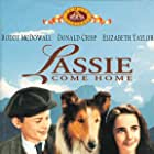 Elizabeth Taylor, Roddy McDowall, and Pal in Lassie Come Home (1943)
