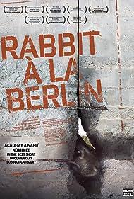 Królik po berlinsku (2009) Poster - Movie Forum, Cast, Reviews