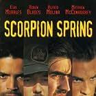 Scorpion Spring (1995)