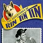 James Brown and Rin Tin Tin II in The Adventures of Rin Tin Tin (1954)