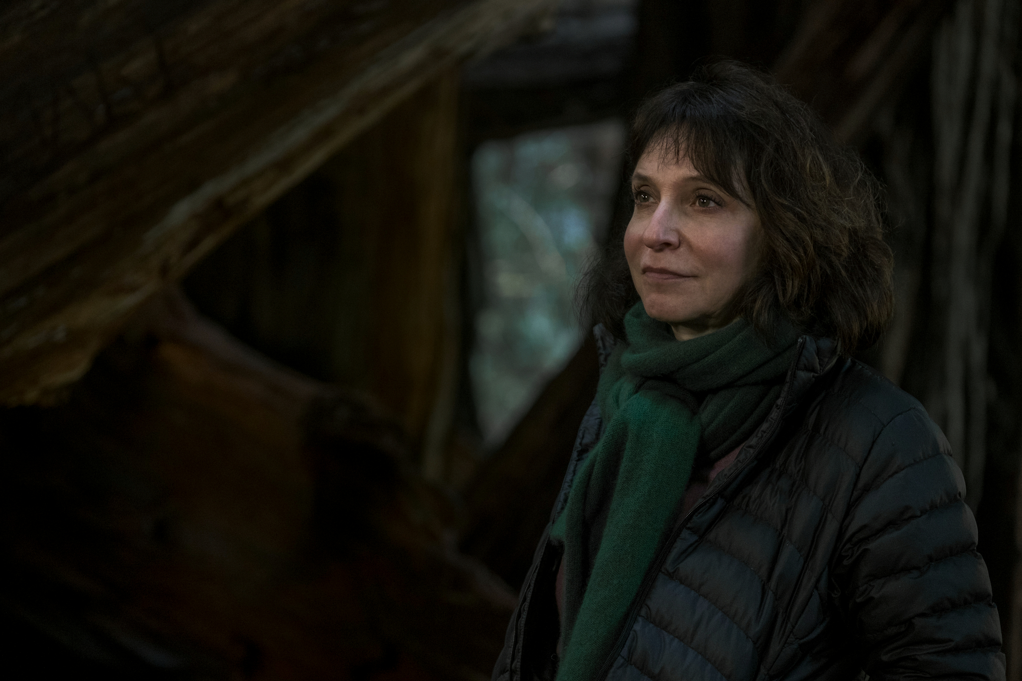 Susanne Bier in Bird Box (2018)