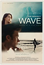 The Perfect Wave (2014) 1080p