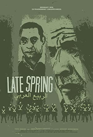 Where to stream Late Spring