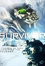 Primary image for Survivor