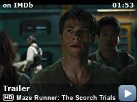 maze runner 1080p torrent