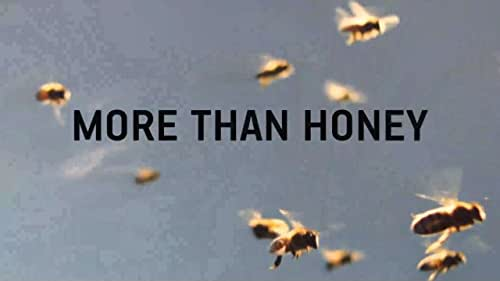 Director Markus Imhoof tackles the issue of why bees, worldwide, are facing extinction. With the tenacity of a man out to solve a world-class mystery, he investigates this global phenomenon.