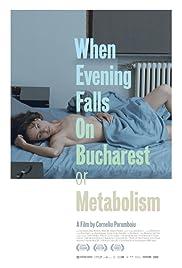 Când se lasã seara peste Bucuresti sau metabolism(2013) Poster - Movie Forum, Cast, Reviews