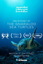 The Mystery of the Gnaraloo Sea Turtles