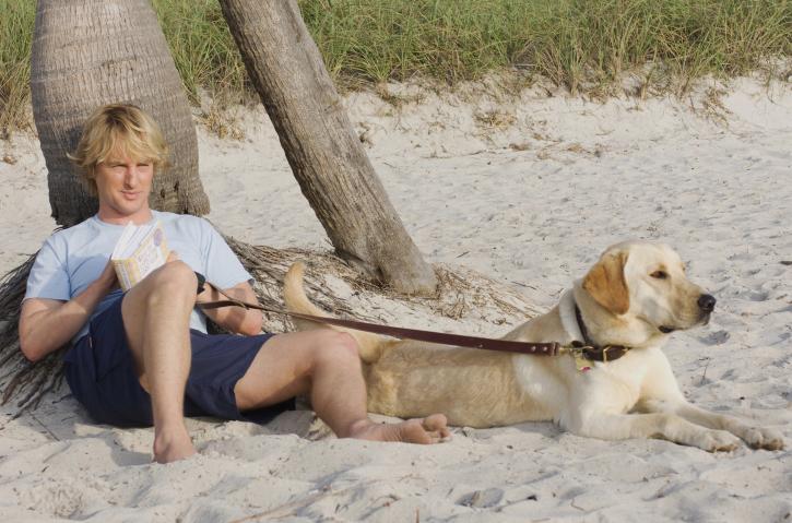 Owen Wilson in Marley & Me (2008)
