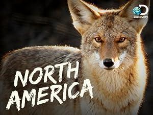 Where to stream North America