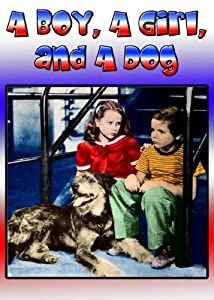 Se nye filmtrailere for 2016 A Boy, a Girl and a Dog (1946)  [WEB-DL] [4K2160p] by Herbert Kline