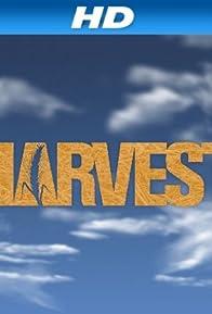 Primary photo for Harvest