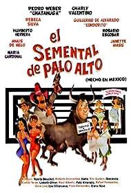 El semental de Palo Alto (1988)