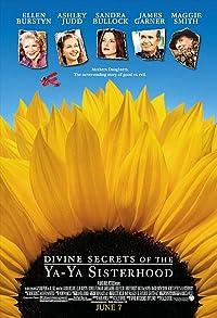 Primary photo for Divine Secrets of the Ya-Ya Sisterhood
