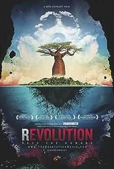 Revolution (II) (2012)