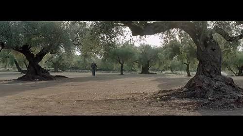 THE OLIVE TREE Theatrical Trailer (UK & Ireland)
