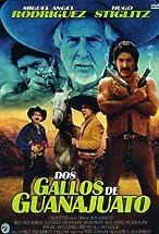 Primary image for Dos gallos de Guanajuato