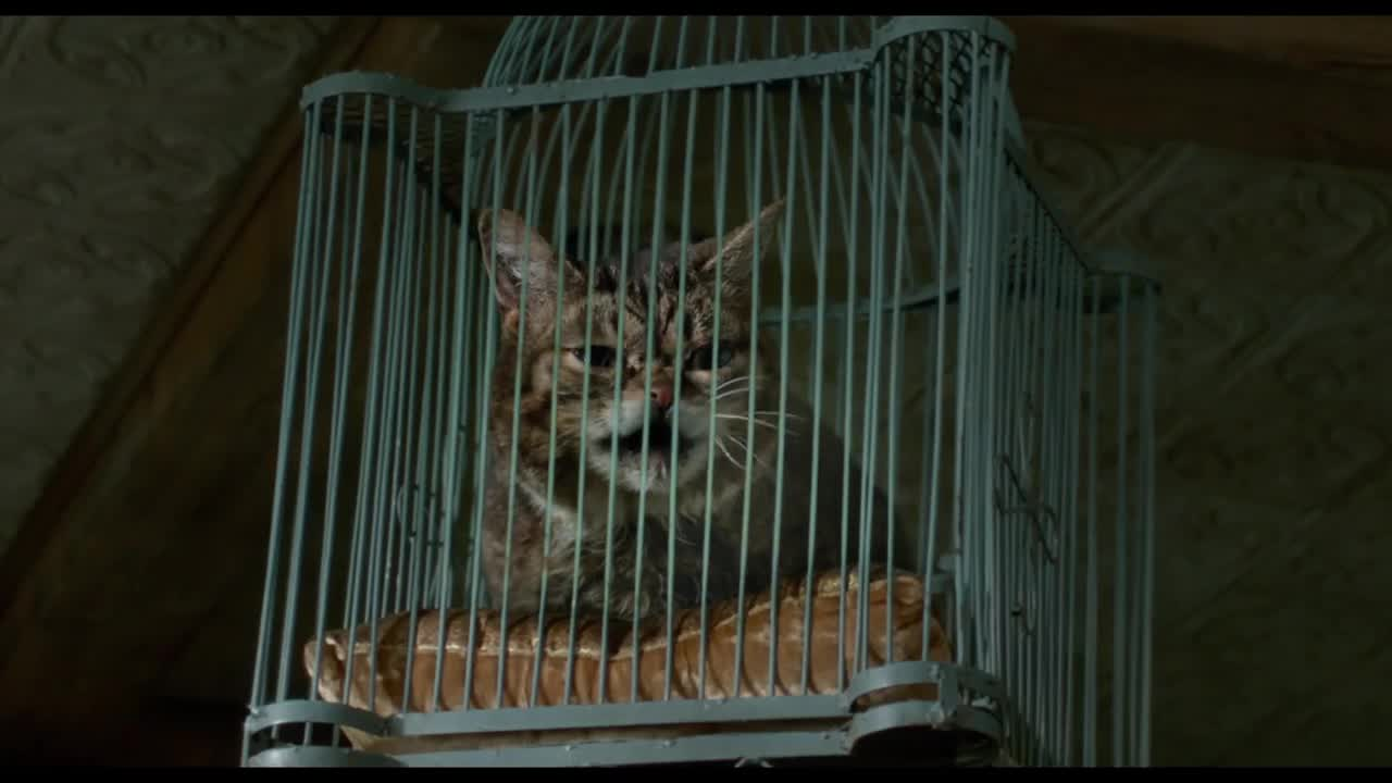 Nine Lives (2016) - IMDb