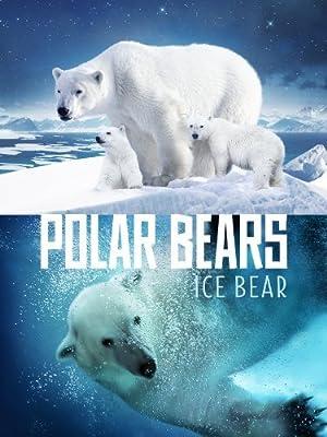 Polar Bears: Ice Bear (2013)