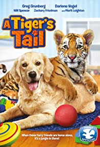 Primary photo for A Tiger's Tail