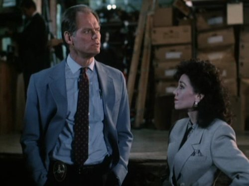 Fred Dryer and Stepfanie Kramer in Hunter 1984