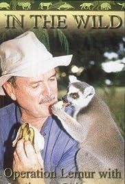 Operation Lemur: Mission to Madagascar Poster