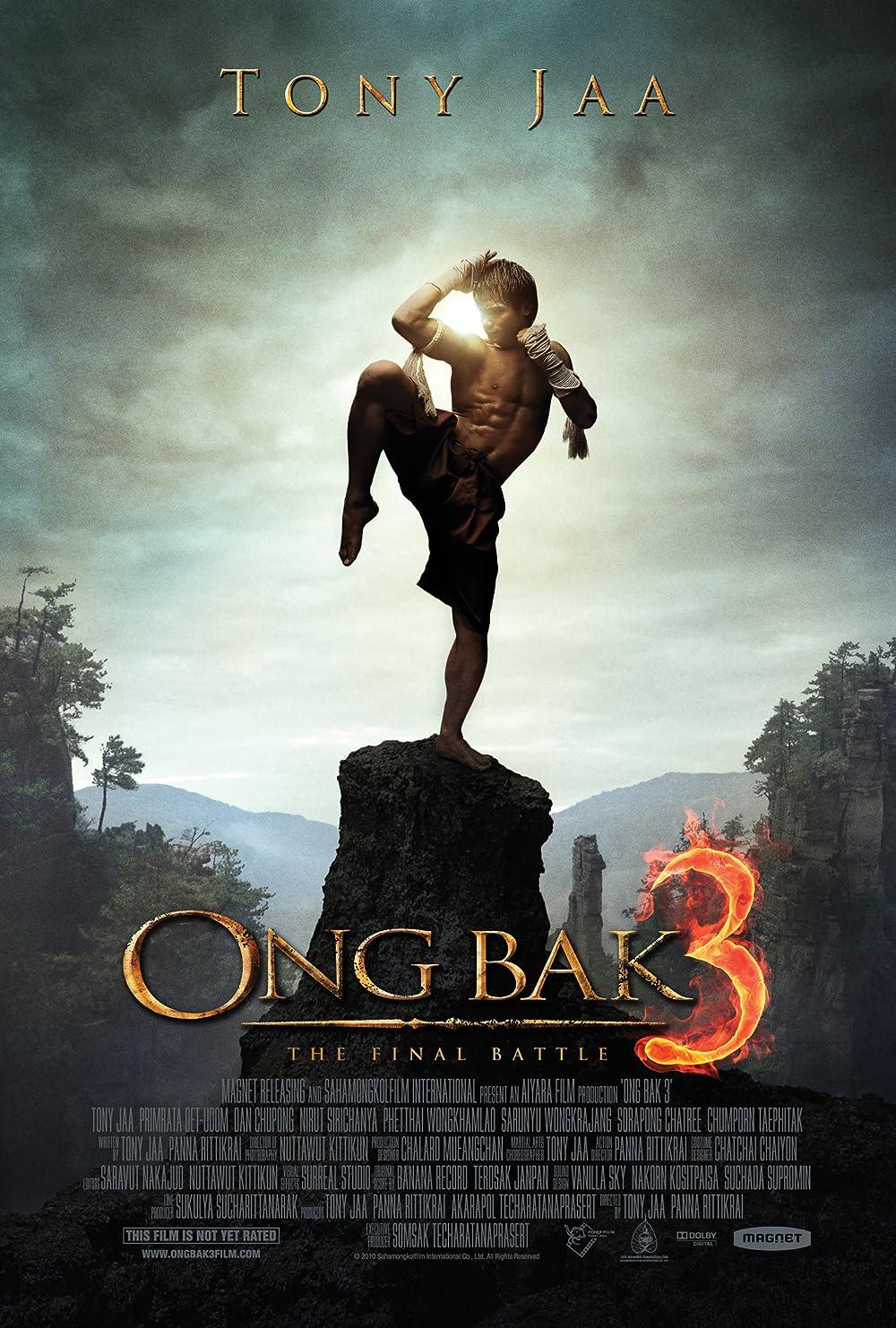 Ong Bak 3 The Finale 2010 Hindi Dual Audio 480p BluRay ESub 353MB Download