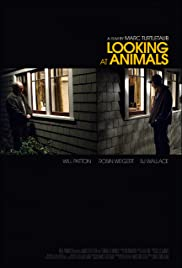 Looking at Animals Poster