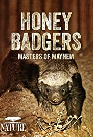 Honey Badgers: Masters of Mayhem Poster