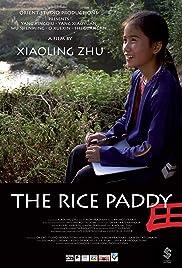 La rizière Poster