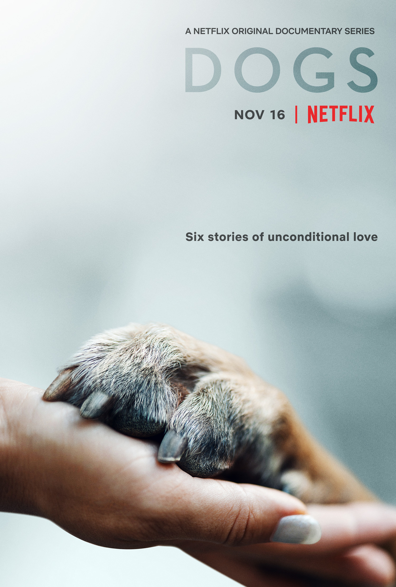 Dogs S02 (2021) English Documentary TV Series All Episodes